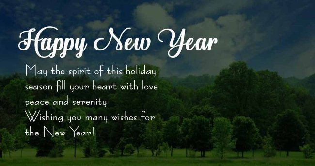 New Year Wishes Quotes for Friends and Family
